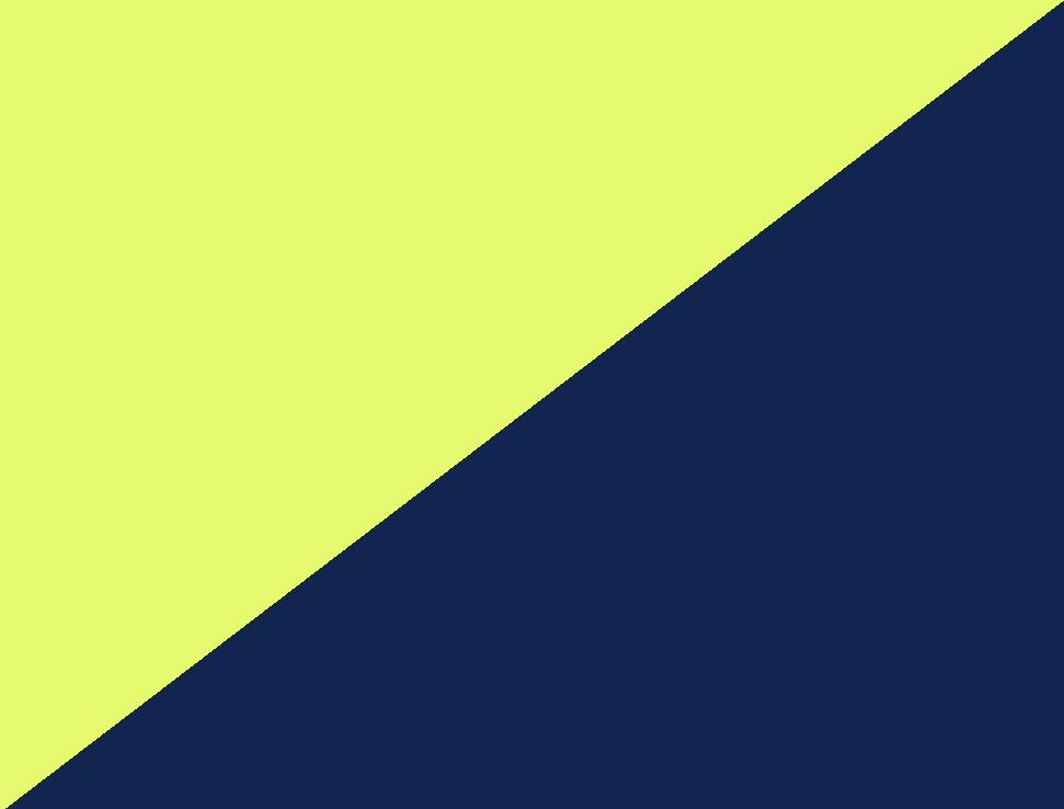 hi-vis gelb/schwarzblau