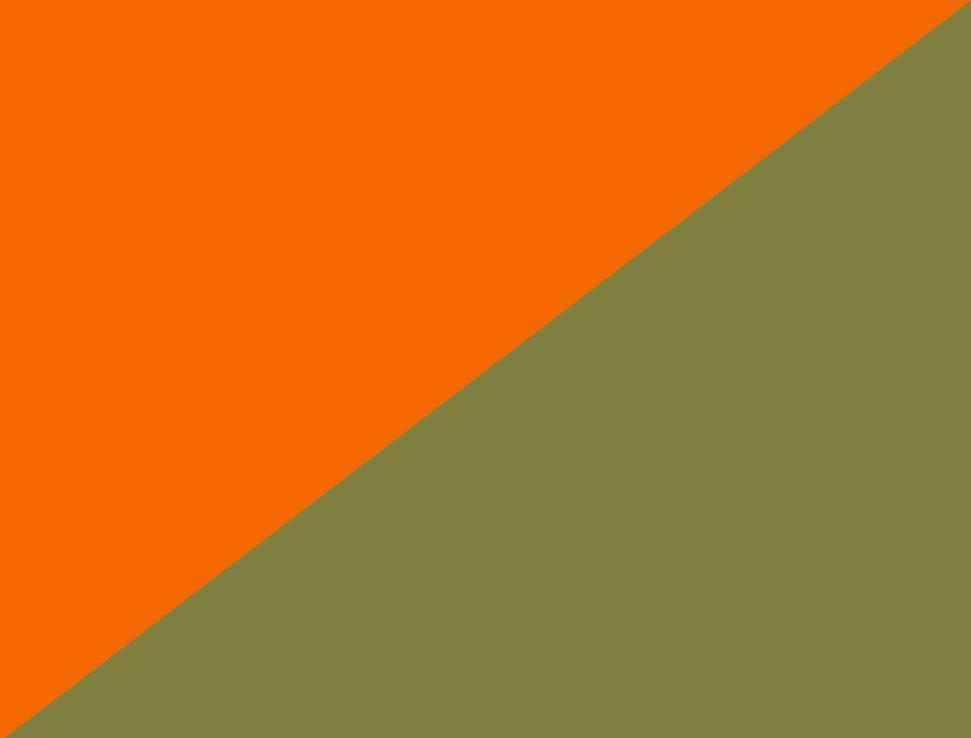 hi-vis orange/moosgrün