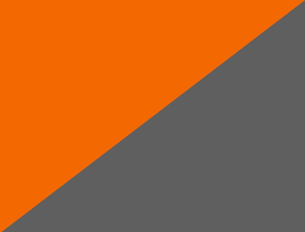 hi-vis orange/dunkelanthrazit