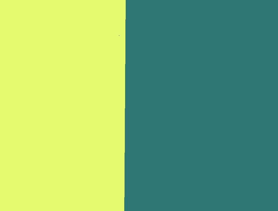 hi-vis gelb/dunkelpetroleum